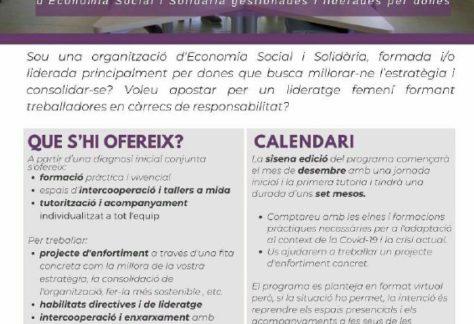 El camí a la solidesa: programa de BCNActiva per organitzacions de l'ESS formades principalment per dones
